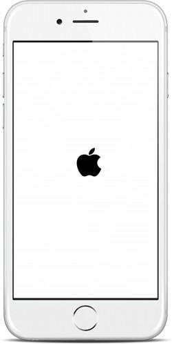 iPhone 6 Boot Logo Bug